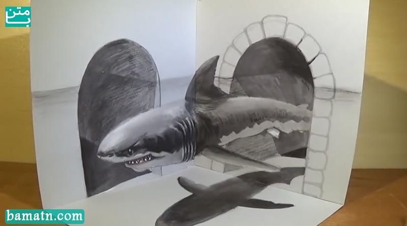 فیلم آموزش نقاشی سه بعدی کوسه با مداد رنگی و رنگ آمیزی
