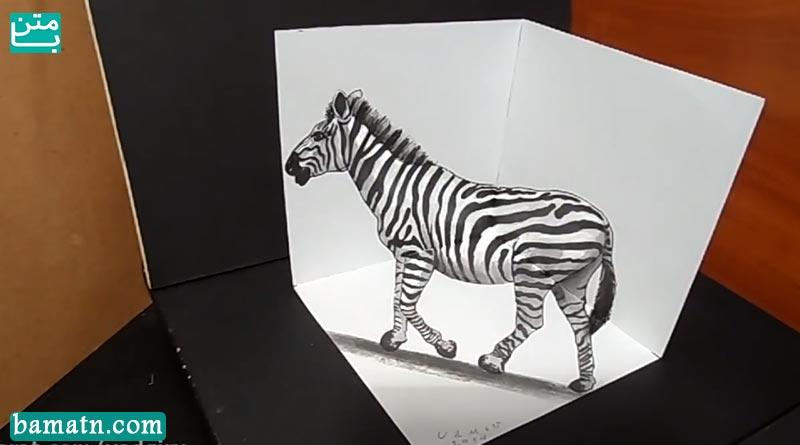 آموزش نقاشی گورخر سه بعدی با مداد رنگی روی کاغذ