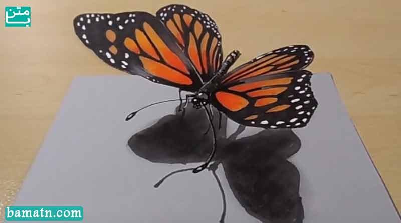 آموزش نقاشی پروانه زیبا سه بعدی با مداد رنگی روی کاغذ