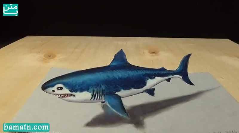 فیلم نقاشی سه بعدی کوسه روی کاغذ با مداد رنگی با رنگ آمیزی