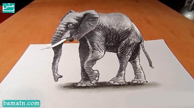 آموزش نقاشی سه بعدی حیوانات با مداد رنگی و رنگ آمیزی