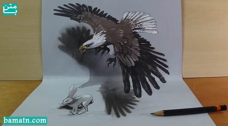 آموزش نقاشی پرنده و خرگوش با مداد رنگی سه بعدی روی کاغذ