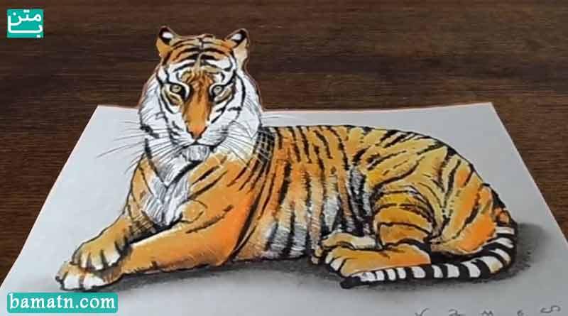 آموزش نقاشی سه بعدی ببر با مداد رنگی و رنگ آمیزی روی کاغذ