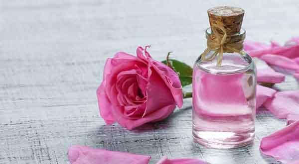 خواص گلاب برای سلامتی انسان